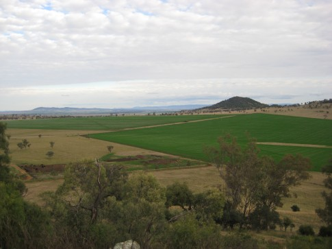 farm view 2