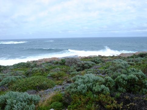 Cape L 2